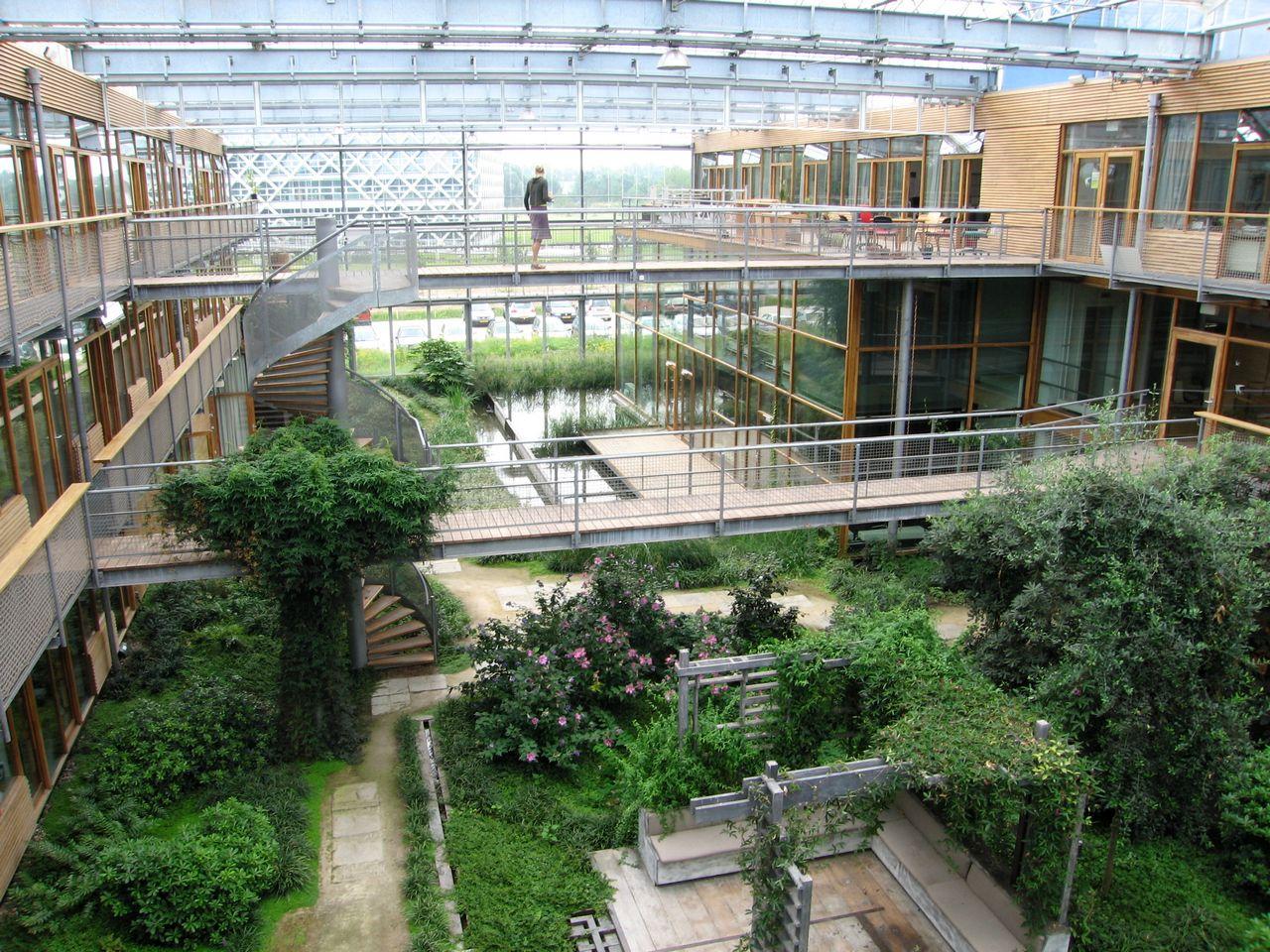 Холл Wageningen University